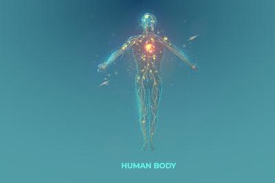 iStock-1276606296 Human Body V2_400 x 267 px
